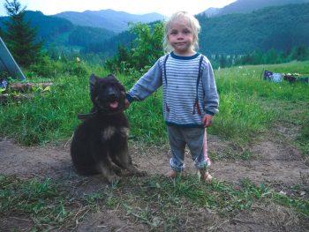 honden en kinderen